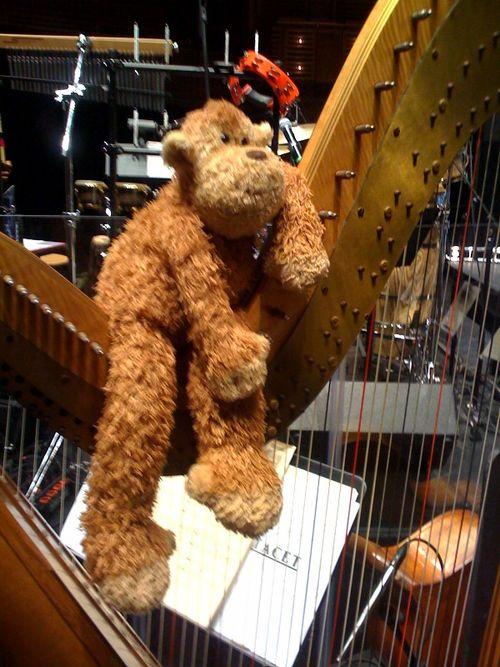 Perdu playing the harp