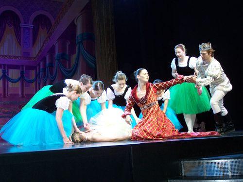 A scene from Sleeping Beauty